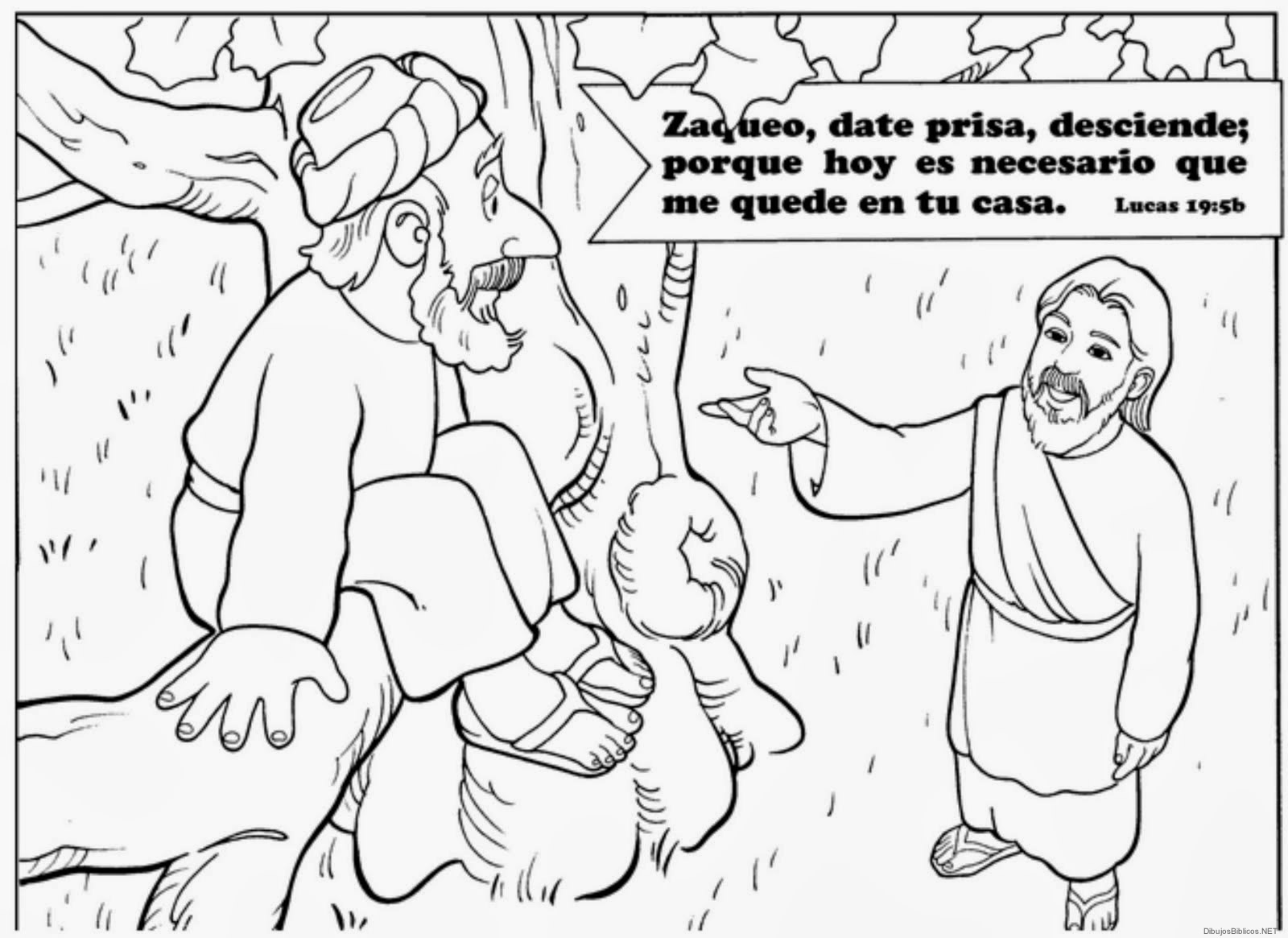 Dibujos_Para_Colorear_De_Zaqueo15.jpg